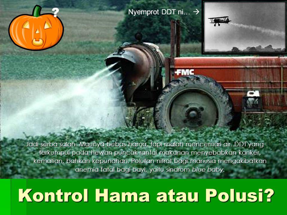 Kontrol Hama atau Polusi.Jadi serba salah. Maunya bebas hama, tapi malah mencemari air.