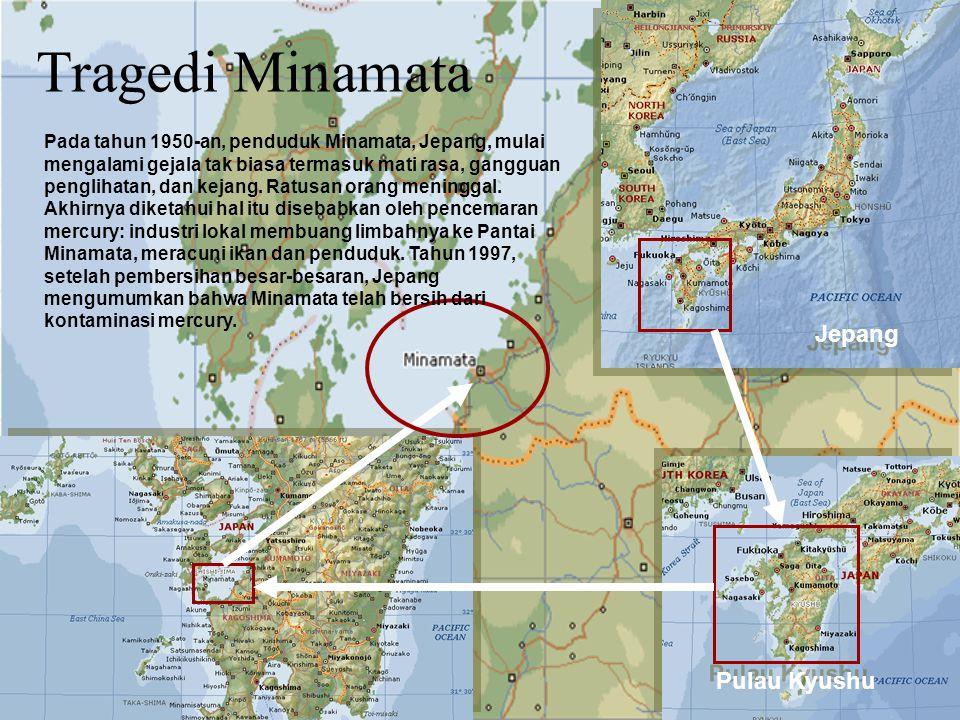 Pulau Kyushu Jepang Tragedi Minamata Pada tahun 1950-an, penduduk Minamata, Jepang, mulai mengalami gejala tak biasa termasuk mati rasa, gangguan penglihatan, dan kejang.