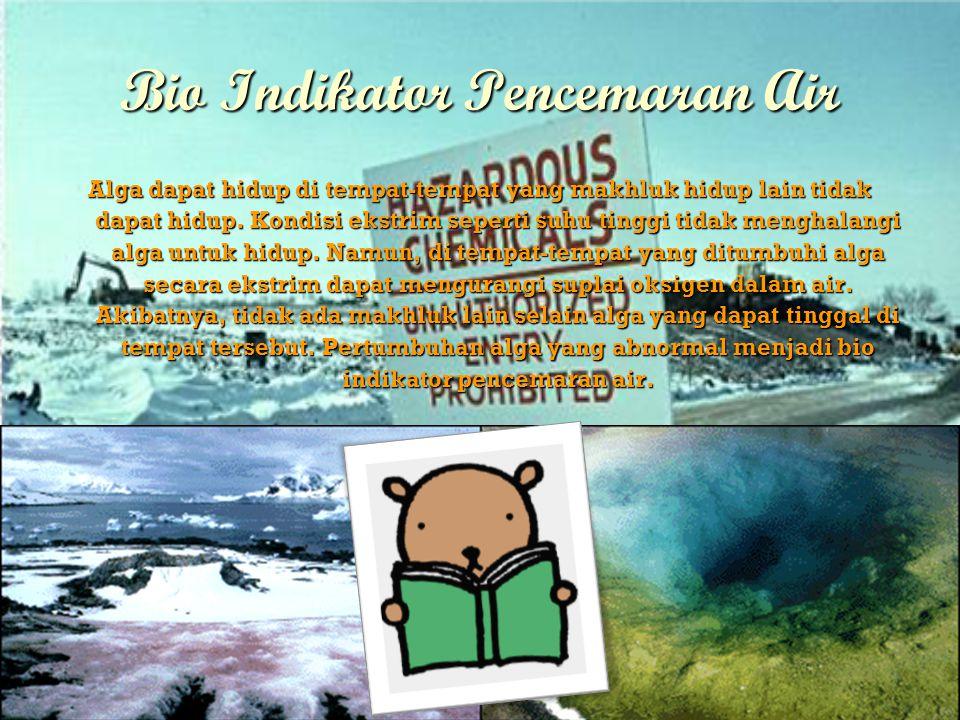 Bio Indikator Pencemaran Air Alga dapat hidup di tempat-tempat yang makhluk hidup lain tidak dapat hidup.