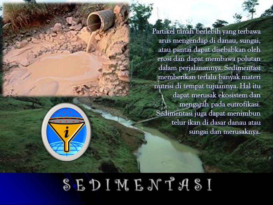 S E D I M E N T A S I Partikel tanah berlebih yang terbawa arus mengendap di danau, sungai, atau pantai dapat disebabkan oleh erosi dan dapat membawa polutan dalam perjalanannya.