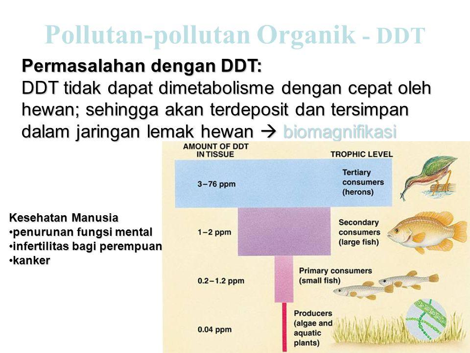 Permasalahan dengan DDT: DDT tidak dapat dimetabolisme dengan cepat oleh hewan; sehingga akan terdeposit dan tersimpan dalam jaringan lemak hewan  biomagnifikasi Kesehatan Manusia •penurunan fungsi mental •infertilitas bagi perempuan •kanker
