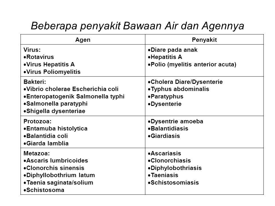 Beberapa penyakit Bawaan Air dan Agennya AgenPenyakit Virus:  Rotavirus  Virus Hepatitis A  Virus Poliomyelitis  Diare pada anak  Hepatitis A  P