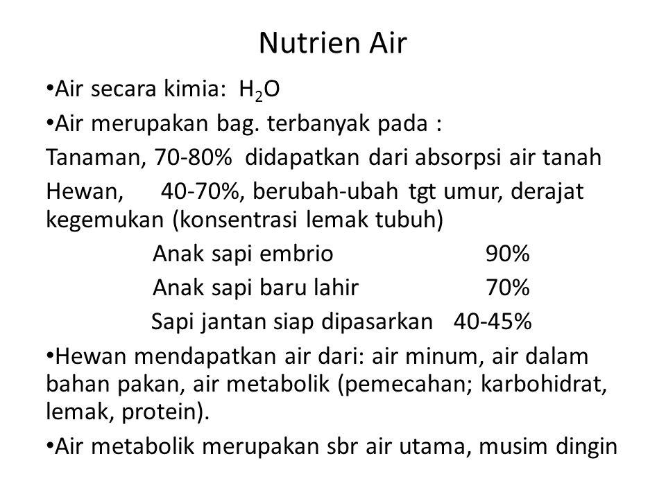 Nutrien Air • Air secara kimia: H 2 O • Air merupakan bag. terbanyak pada : Tanaman, 70-80% didapatkan dari absorpsi air tanah Hewan, 40-70%, berubah-