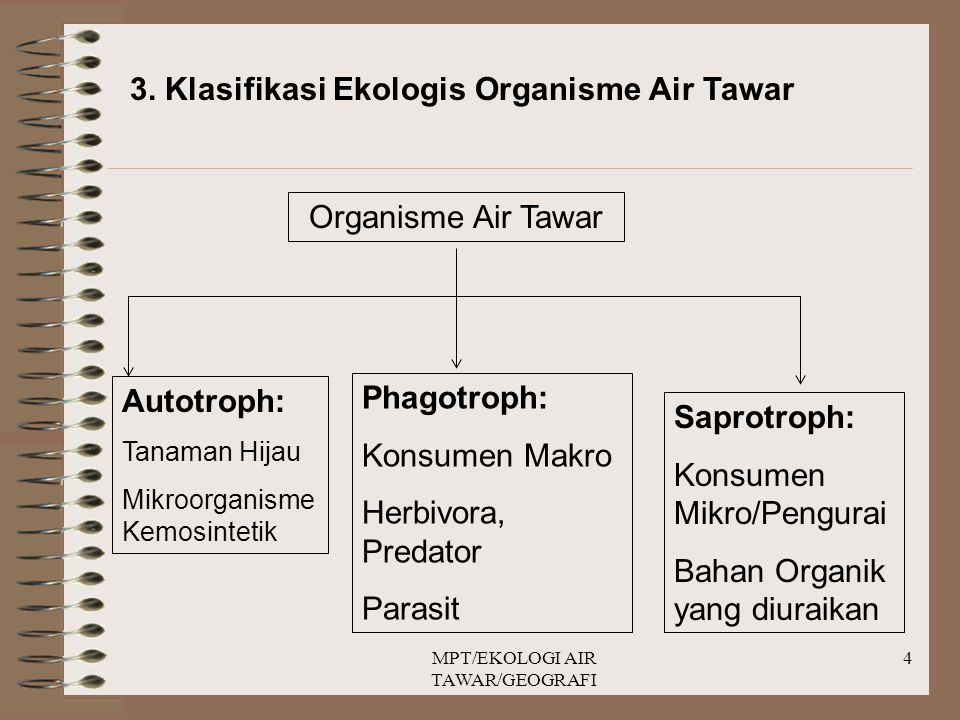 MPT/EKOLOGI AIR TAWAR/GEOGRAFI 4 3. Klasifikasi Ekologis Organisme Air Tawar Organisme Air Tawar Autotroph: Tanaman Hijau Mikroorganisme Kemosintetik
