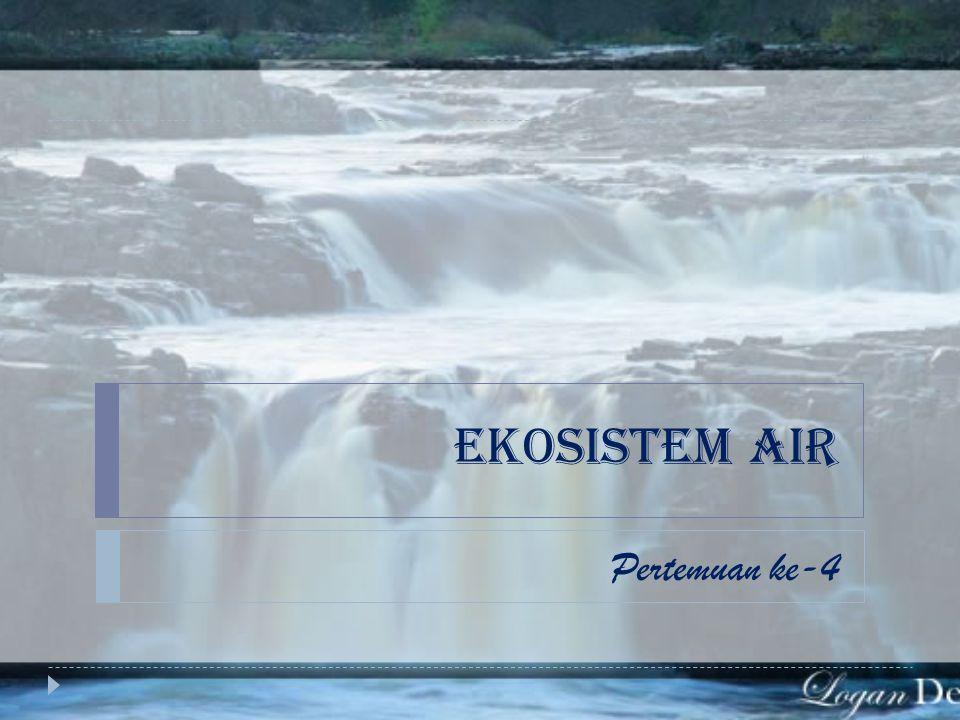 EKOSISTEM AIR Pertemuan ke-4
