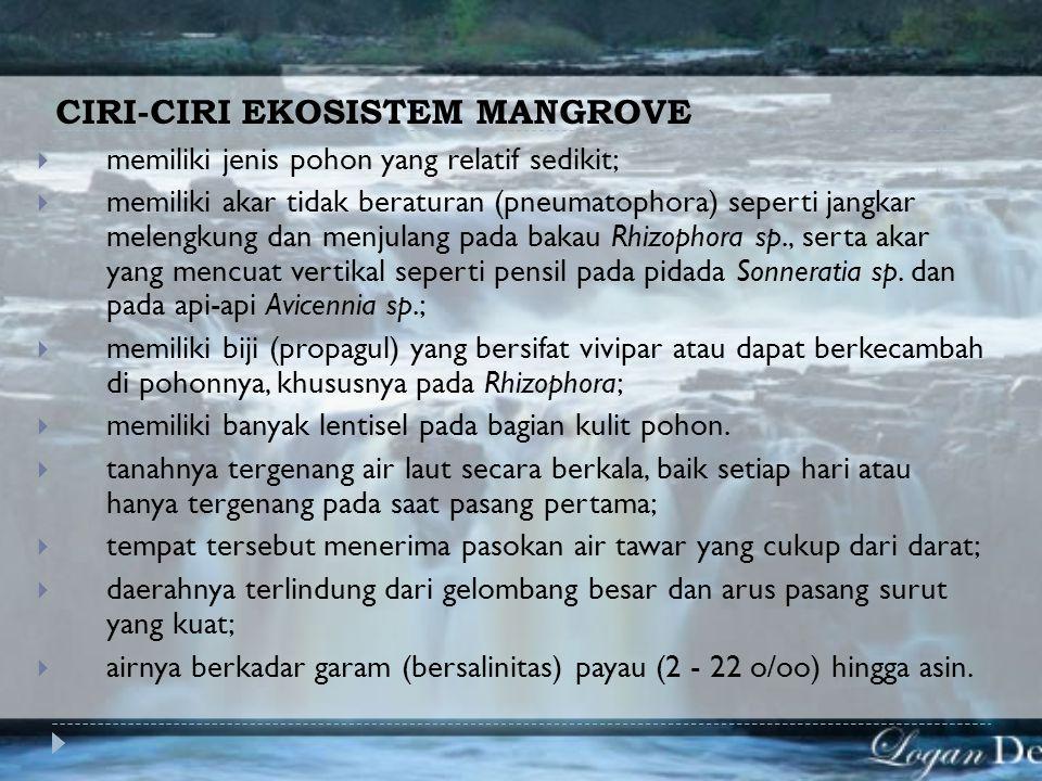 Ekosistem Mangrove  Mangrove : sebutan umum yang digunakan untuk menggambarkan suatu komunitas pantai tropic yang didominasi oleh beberapa spesies po