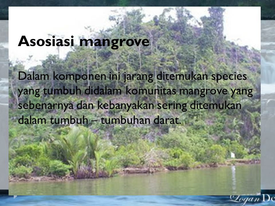 Mangrove minor (tumbuhan pantai) Dalam kelompok ini tidak termasuk elemen yang mencolok dari tumbuh – tumbuhan yang mungkin terdapat disekitar habitat