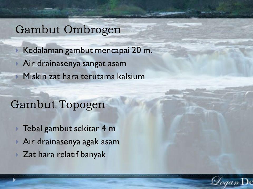 EKOSISTEM RAWA  Ekosistem rawa gambut  Ekosistem rawa air tawar  GAMBUT adalah suatu tipe tanah yang dibentuk dari sisa- sisa tumbuhan (akar, batan