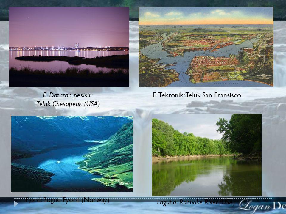 E.Dataran pesisir: Teluk Chesapeak (USA) E.