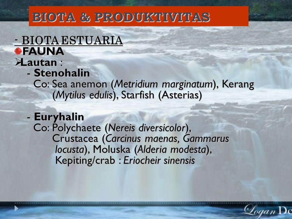 BIOTA & PRODUKTIVITAS - BIOTA ESTUARIA FAUNA  Lautan : - Stenohalin - Stenohalin Co: Sea anemon (Metridium marginatum), Kerang Co: Sea anemon (Metridium marginatum), Kerang (Mytilus edulis), Starfish (Asterias) (Mytilus edulis), Starfish (Asterias) - Euryhalin - Euryhalin Co: Polychaete (Nereis diversicolor), Co: Polychaete (Nereis diversicolor), Crustacea (Carcinus maenas, Gammarus Crustacea (Carcinus maenas, Gammarus locusta), Moluska (Alderia modesta), locusta), Moluska (Alderia modesta), Kepiting/crab : Eriocheir sinensis Kepiting/crab : Eriocheir sinensis