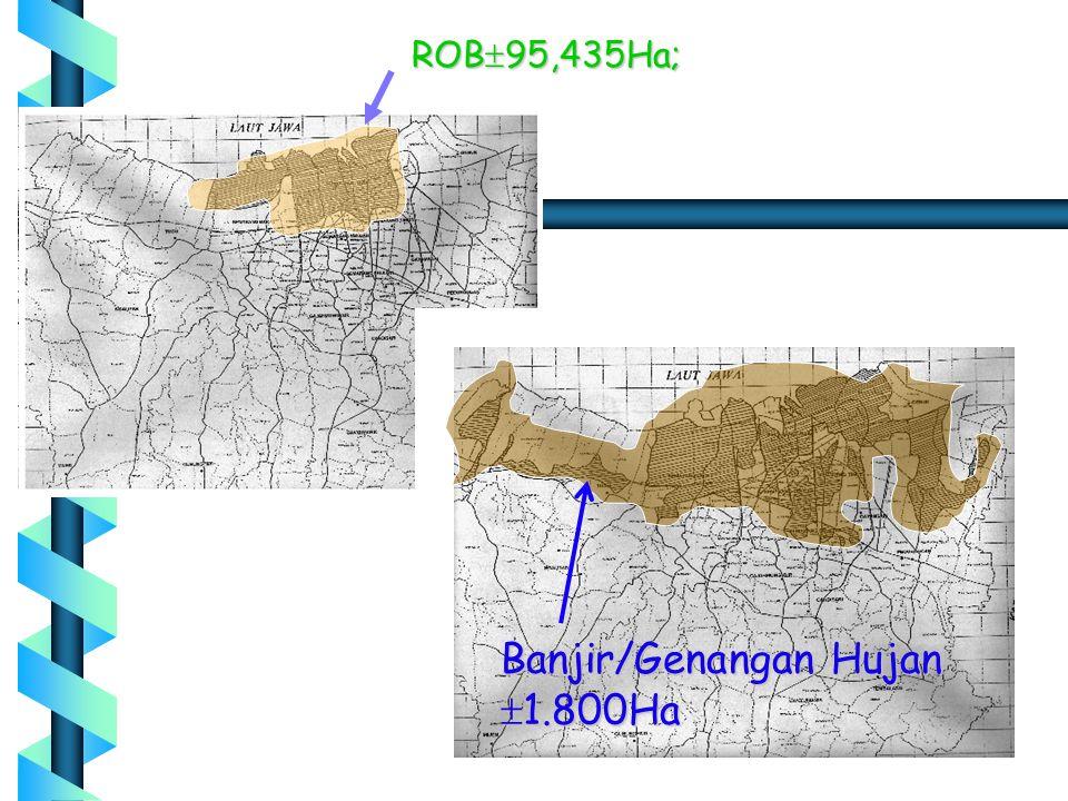 Banjir/Genangan Hujan  1.800Ha ROB  95,435Ha;