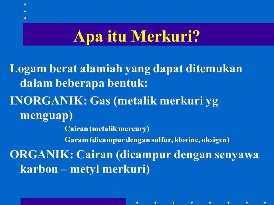 Apa itu Merkuri? Logam berat alamiah yang dapat ditemukan dalam beberapa bentuk: INORGANIK: Gas (metalik merkuri yg menguap) Cairan (metalik mercury)