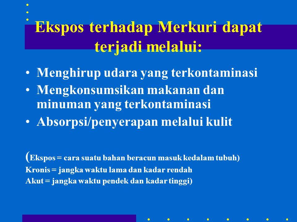 Ekspos terhadap Merkuri dapat terjadi melalui: •Menghirup udara yang terkontaminasi •Mengkonsumsikan makanan dan minuman yang terkontaminasi •Absorpsi