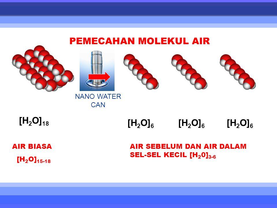 [H 2 O] 18 [H 2 O] 6 [H 2 O] 6 [H 2 O] 6 PEMECAHAN MOLEKUL AIR AIR BIASA [H 2 O] 15-18 AIR SEBELUM DAN AIR DALAM SEL-SEL KECIL [H 2 0] 3-6 NANO WATER