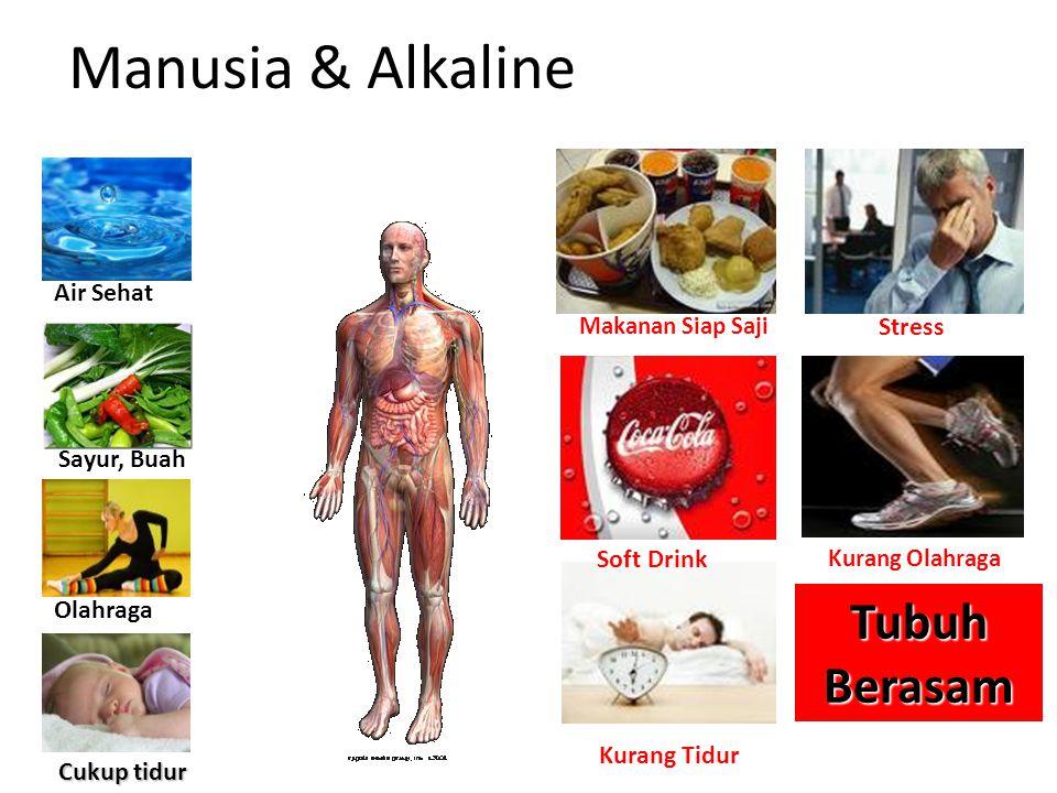 Manusia & Alkaline Tubuh Berasam Makanan Siap Saji Stress Soft Drink Kurang Olahraga Kurang Tidur Air Sehat Sayur, Buah Olahraga Cukup tidur