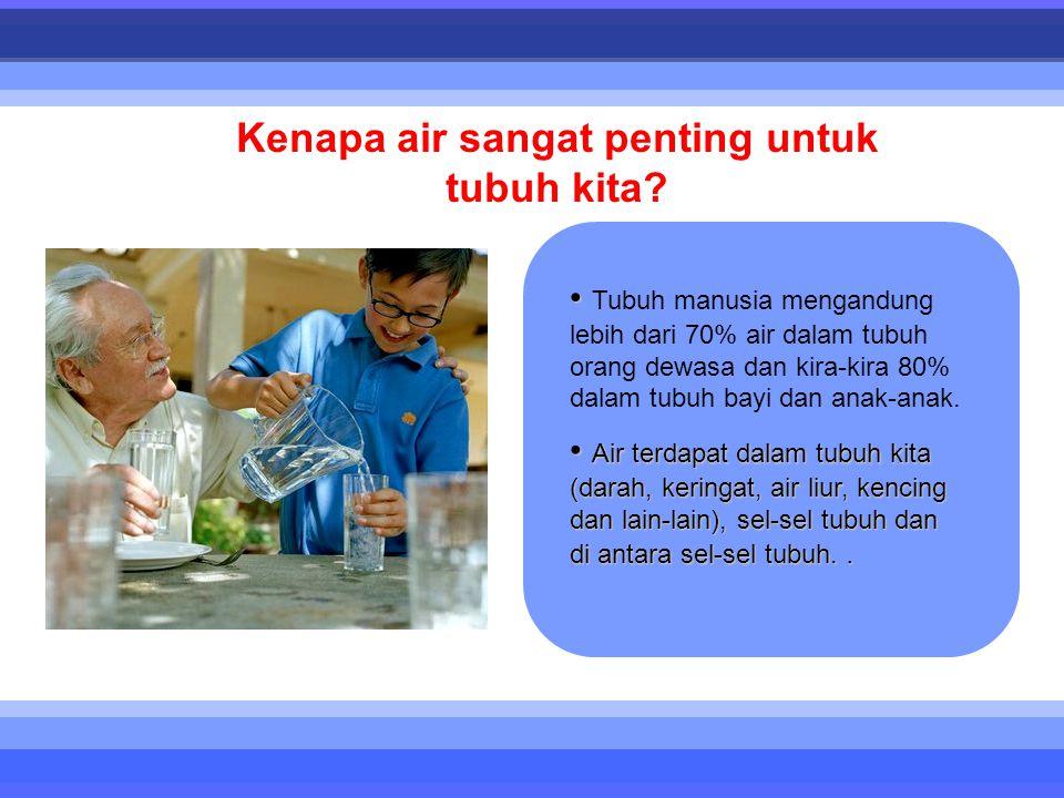 • • Tubuh manusia mengandung lebih dari 70% air dalam tubuh orang dewasa dan kira-kira 80% dalam tubuh bayi dan anak-anak. • Air terdapat dalam tubuh