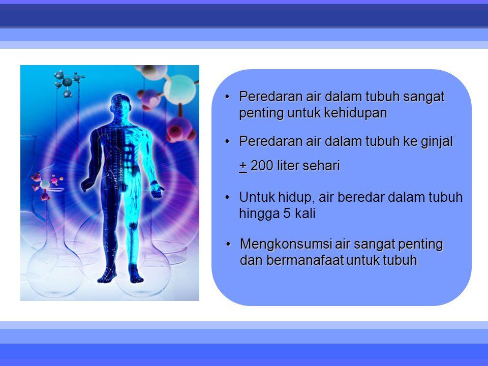 •Peredaran air dalam tubuh sangat penting untuk kehidupan •Peredaran air dalam tubuh ke ginjal + 200 liter sehari •Untuk hidup, air beredar dalam tubu