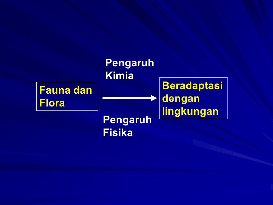 Fauna dan Flora Beradaptasi dengan lingkungan Pengaruh Fisika Pengaruh Kimia