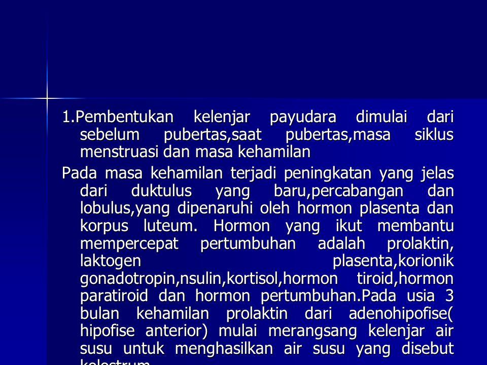 1.Pembentukan kelenjar payudara dimulai dari sebelum pubertas,saat pubertas,masa siklus menstruasi dan masa kehamilan Pada masa kehamilan terjadi peni