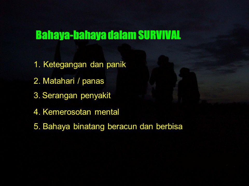 Air Air merupakan prioritas dalam survival.