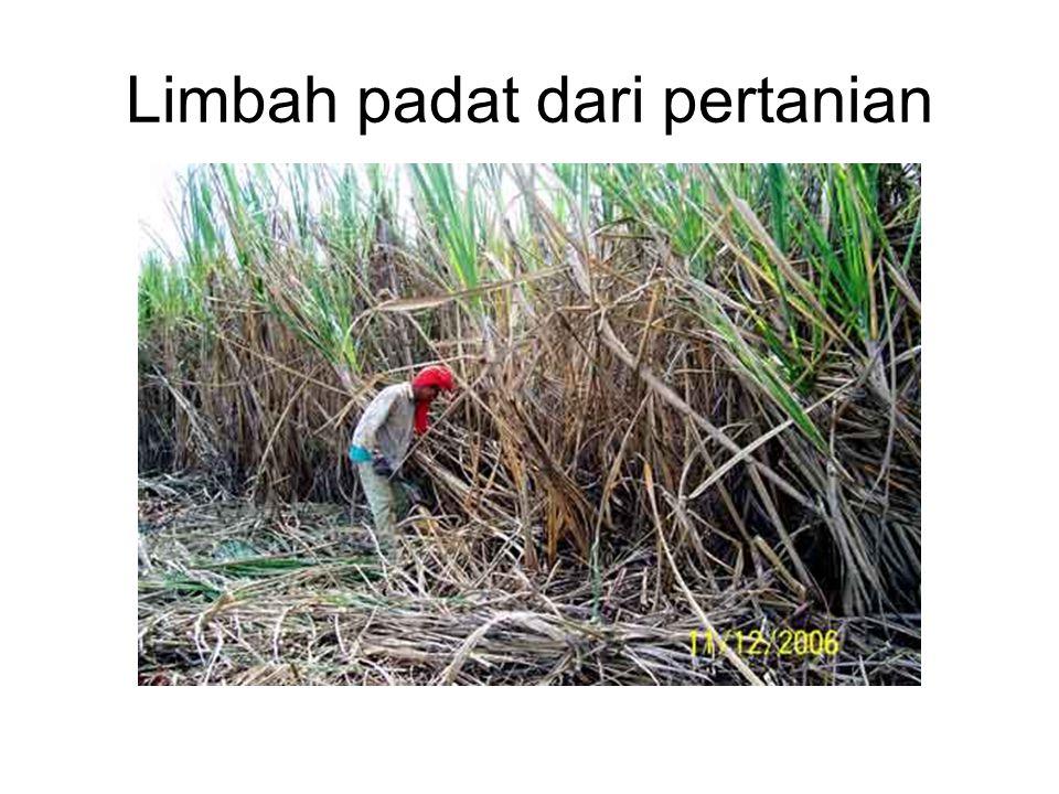 Limbah padat dari pertanian