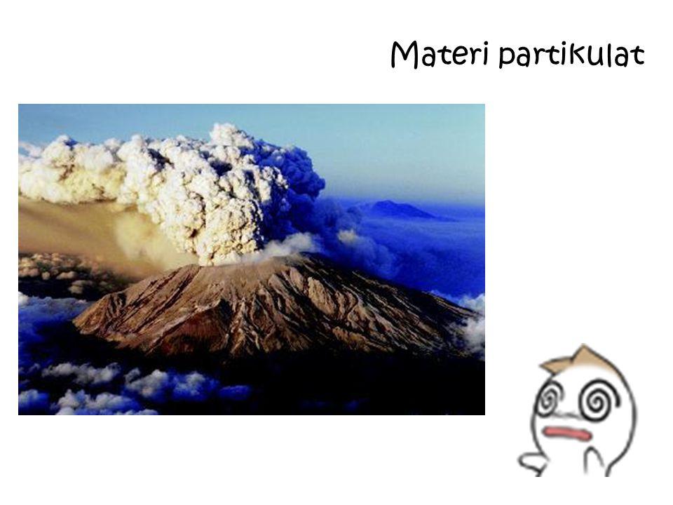 Materi partikulat