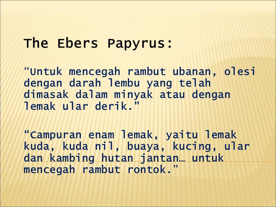 The Ebers Papyrus: Untuk mencegah rambut ubanan, olesi dengan darah lembu yang telah dimasak dalam minyak atau dengan lemak ular derik. Campuran enam lemak, yaitu lemak kuda, kuda nil, buaya, kucing, ular dan kambing hutan jantan… untuk mencegah rambut rontok.