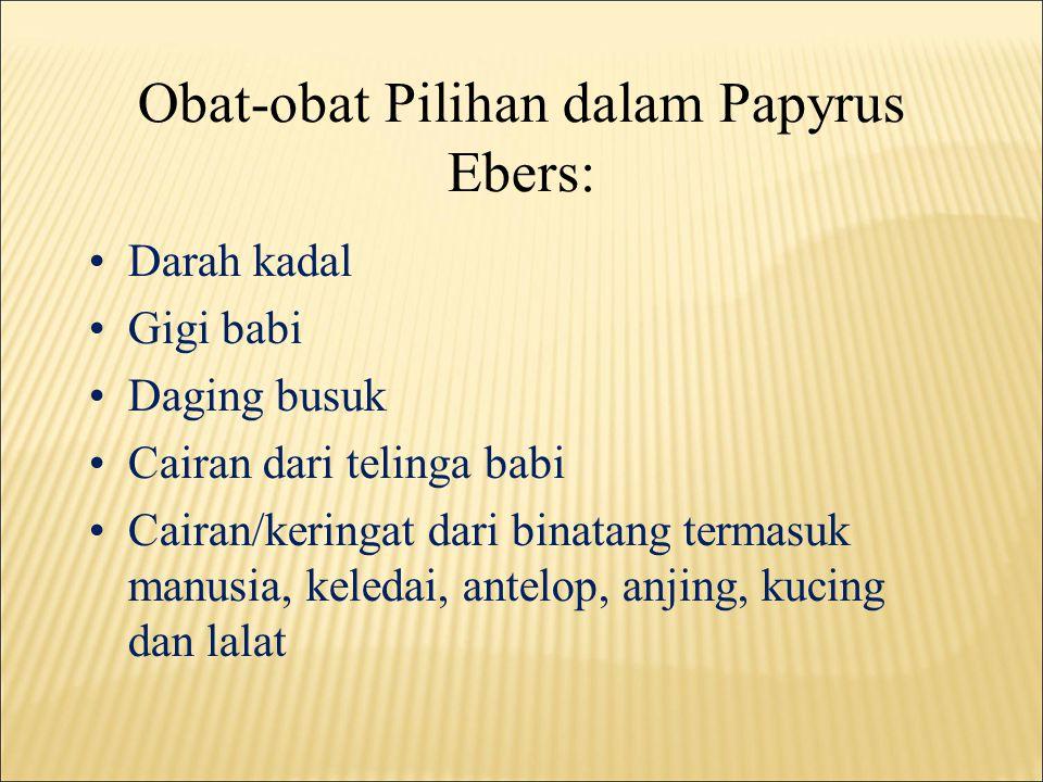 Obat-obat Pilihan dalam Papyrus Ebers: •Darah kadal •Gigi babi •Daging busuk •Cairan dari telinga babi •Cairan/keringat dari binatang termasuk manusia, keledai, antelop, anjing, kucing dan lalat