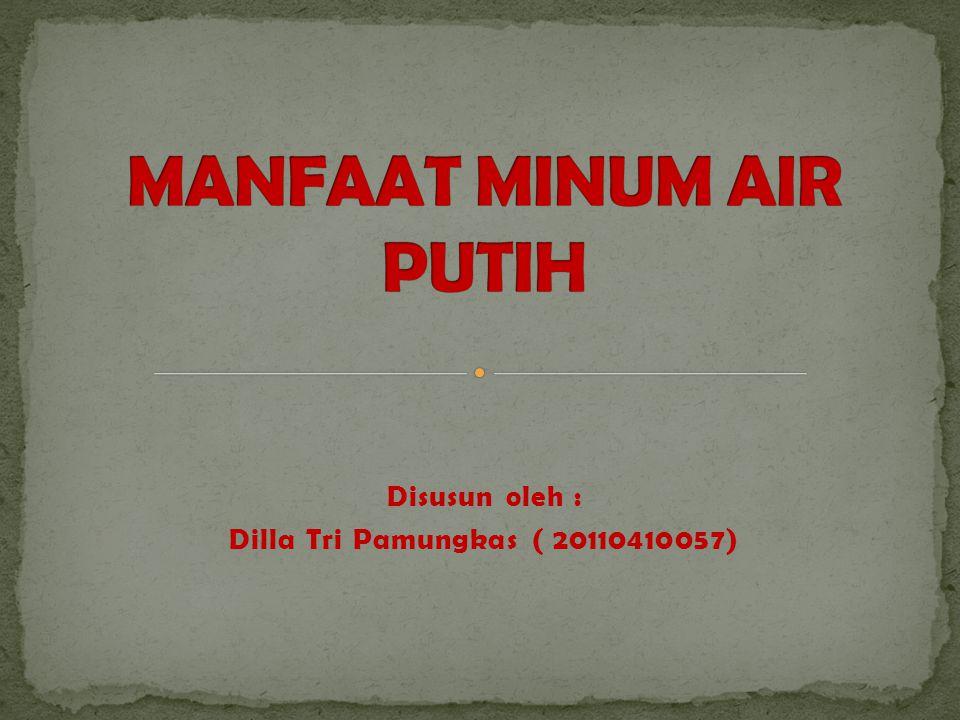 Disusun oleh : Dilla Tri Pamungkas ( 20110410057)
