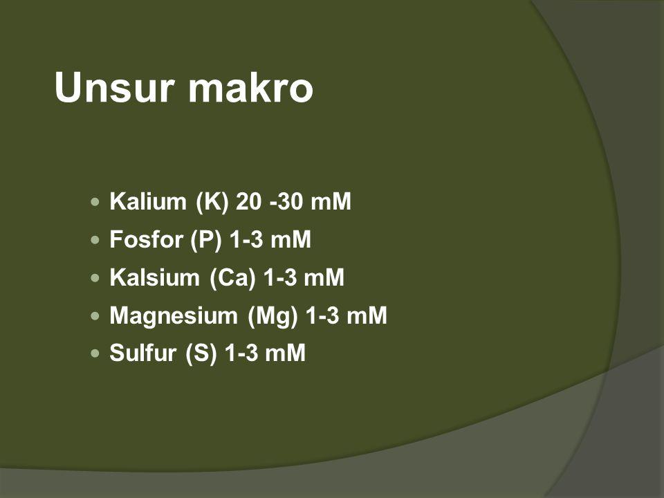 Hara mikro  Besi (Fe) 1  M  Mangan (Mn) 5-30  M  Seng (Zn)  Boron (B)  Tembaga (Cu) 0.1  M  Molybdenum (Mo) 1  M  Cobalt (Co) 0.1  M  Iodine (I) Nickel (Ni), aluminum (Al), and silicon (Si)