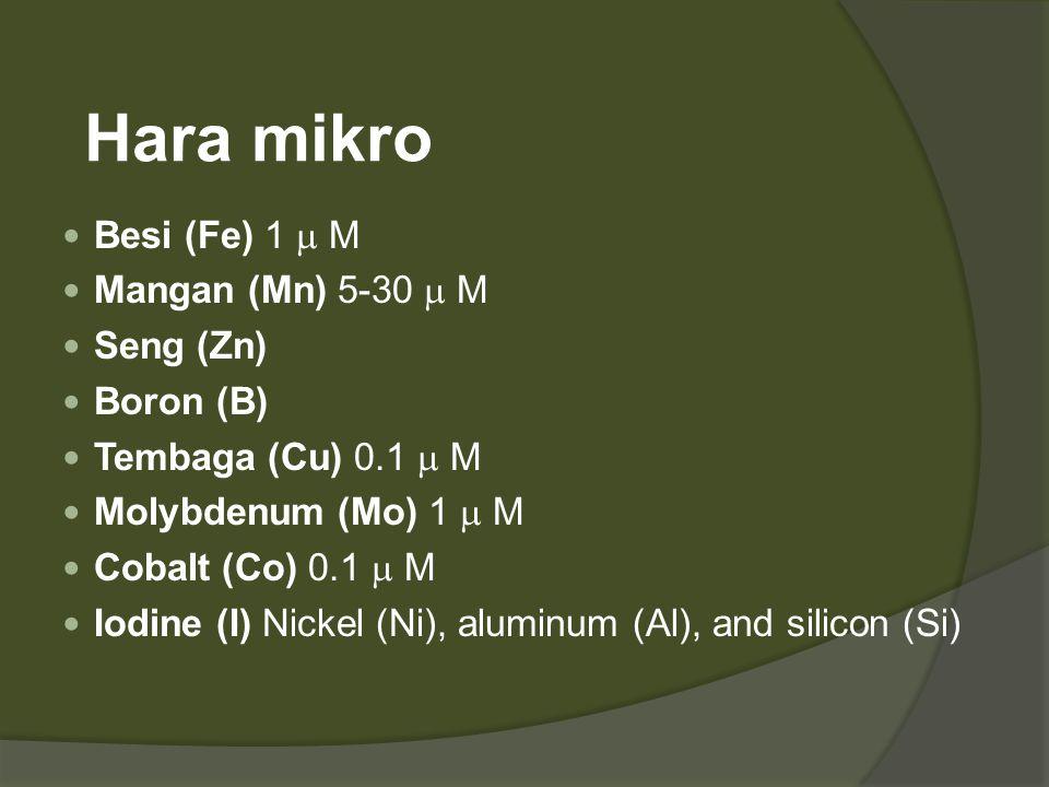 Hara mikro  Besi (Fe) 1  M  Mangan (Mn) 5-30  M  Seng (Zn)  Boron (B)  Tembaga (Cu) 0.1  M  Molybdenum (Mo) 1  M  Cobalt (Co) 0.1  M  Iod