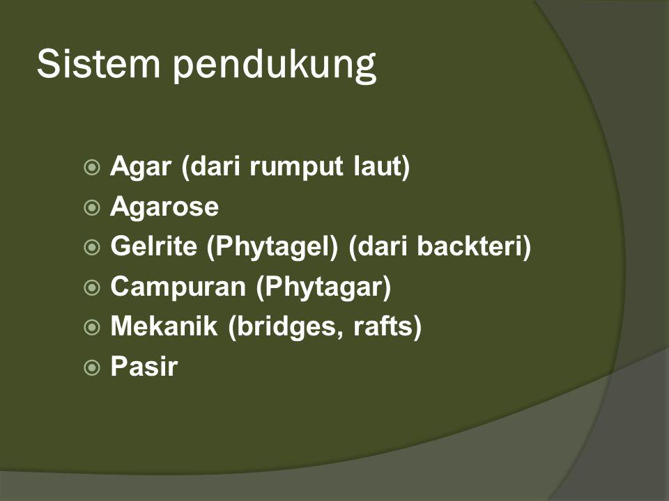 Sistem pendukung  Agar (dari rumput laut)  Agarose  Gelrite (Phytagel) (dari backteri)  Campuran (Phytagar)  Mekanik (bridges, rafts)  Pasir