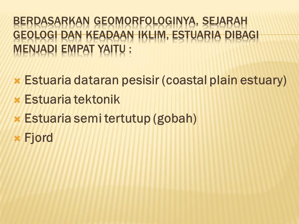 Klasifikasi estuaria dari proses salinitas dibentuk, ada tiga kriteria yaitu:  Estuaria positif (baji garam)  Estuaria negatif  Estuaria percampuran sempurna