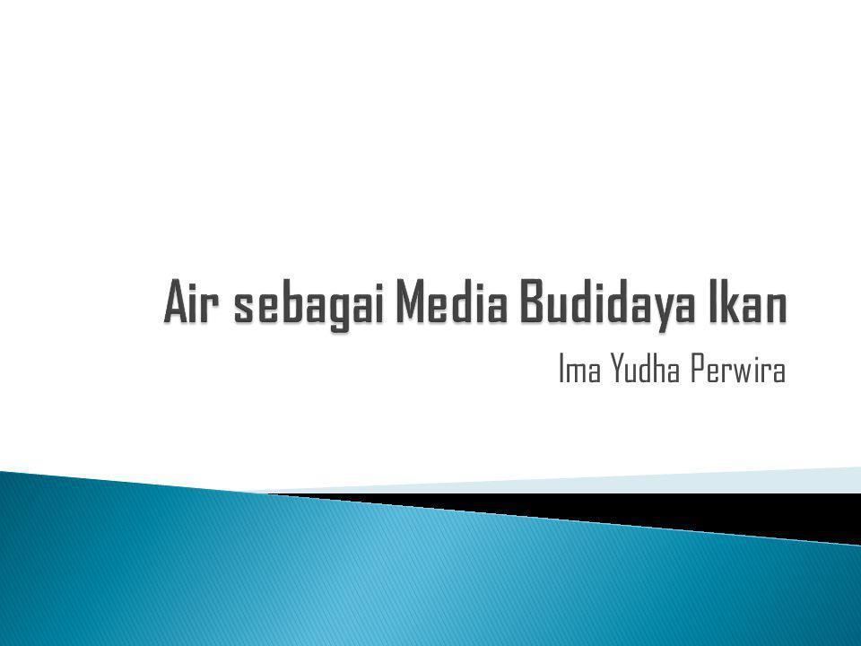 Ima Yudha Perwira