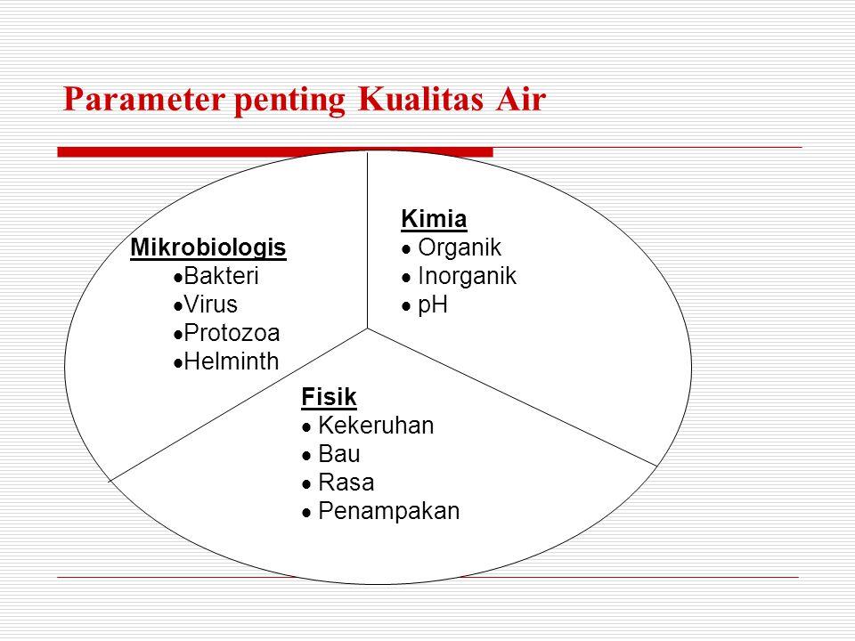 Parameter penting Kualitas Air Kimia  Organik  Inorganik  pH Mikrobiologis  Bakteri  Virus  Protozoa  Helminth Fisik  K ekeruhan  B au  R asa  P enampakan