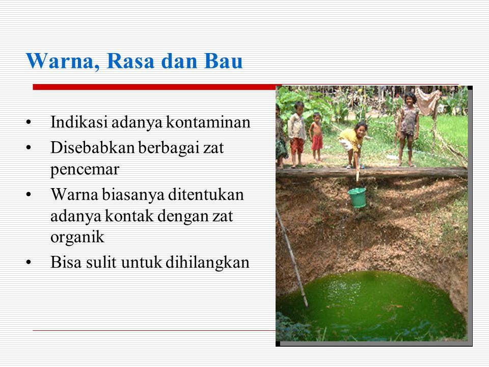 •Zat tersuspensi •Zat organik dan inorganik •Bakteri yang menempel di partikel •Penting untuk dihilangkan Kekeruhan
