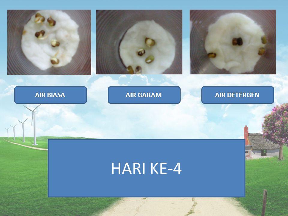 AIR BIASAAIR GARAMAIR DETERGEN HARI KE-4