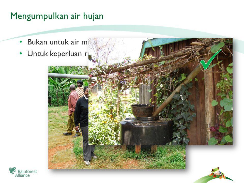Mengumpulkan air hujan • Bukan untuk air minum • Untuk keperluan rumah tangga, irigasi, dll.