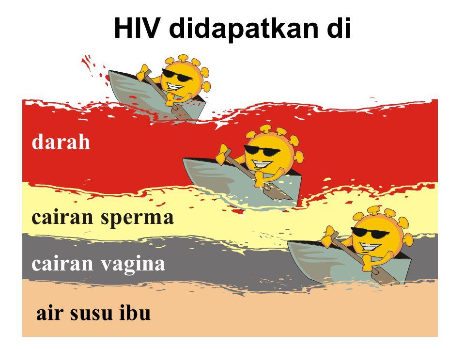 cairan sperma darah HIV didapatkan di cairan vagina air susu ibu