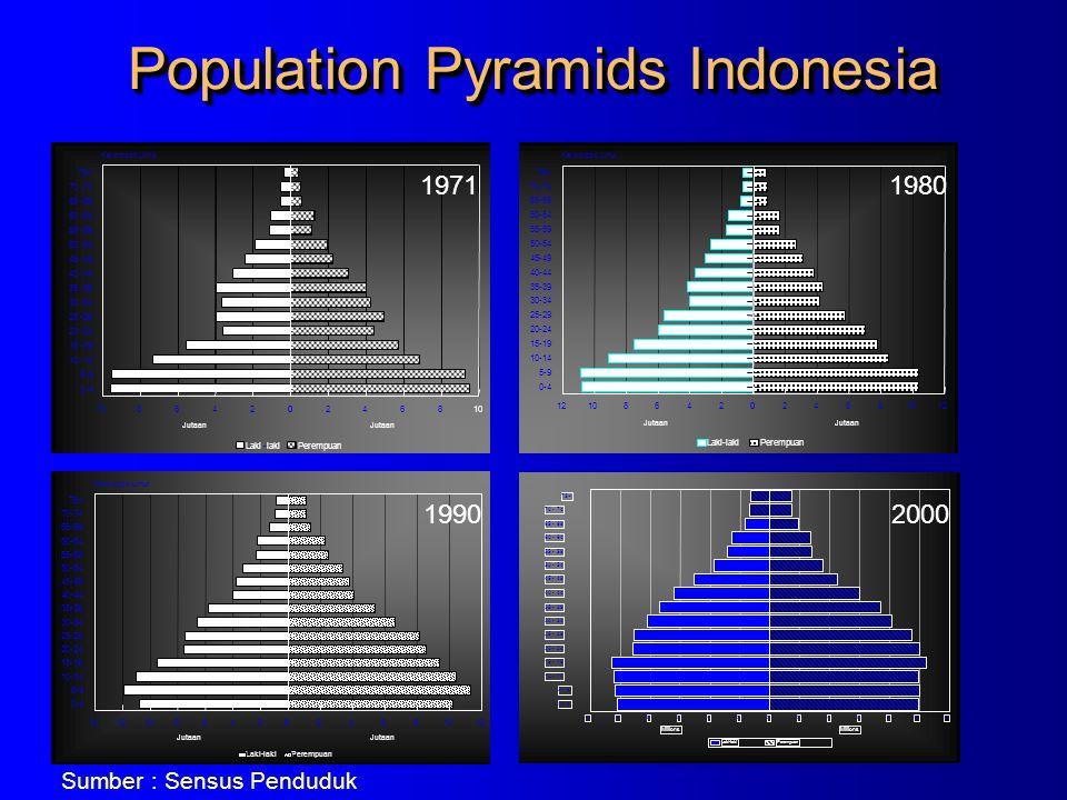 Population Pyramids Indonesia 1980 1990 75+ 70 - 74 65 - 69 60 - 64 55 - 59 50 - 54 45 - 49 40 - 44 35 - 39 30 - 34 25 - 29 20 - 24 15 - 19 10 - 14 5