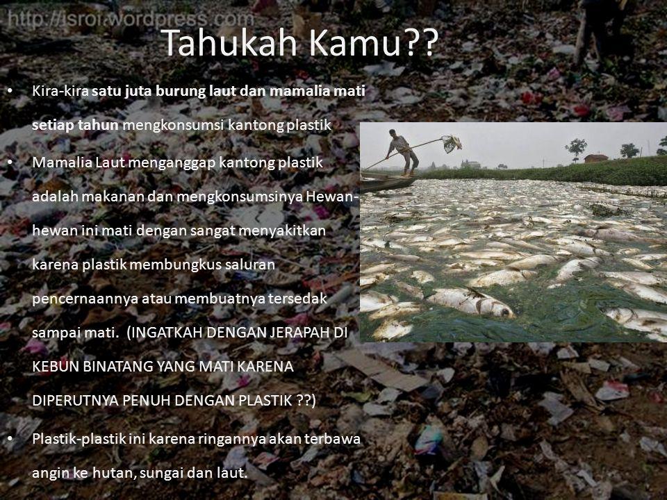 Tahukah Kamu?? • Kira-kira satu juta burung laut dan mamalia mati setiap tahun mengkonsumsi kantong plastik • Mamalia Laut menganggap kantong plastik