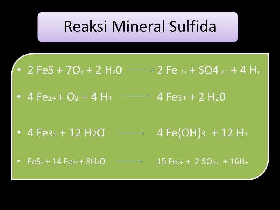 Reaksi Mineral Sulfida • 2 FeS + 7O 2 + 2 H 2 0 2 Fe 2+ + SO4 2+ + 4 H + • 4 Fe 2+ + O 2 + 4 H + 4 Fe 3+ + 2 H 2 0 • 4 Fe 3+ + 12 H 2 O4 Fe(OH) 3 + 12