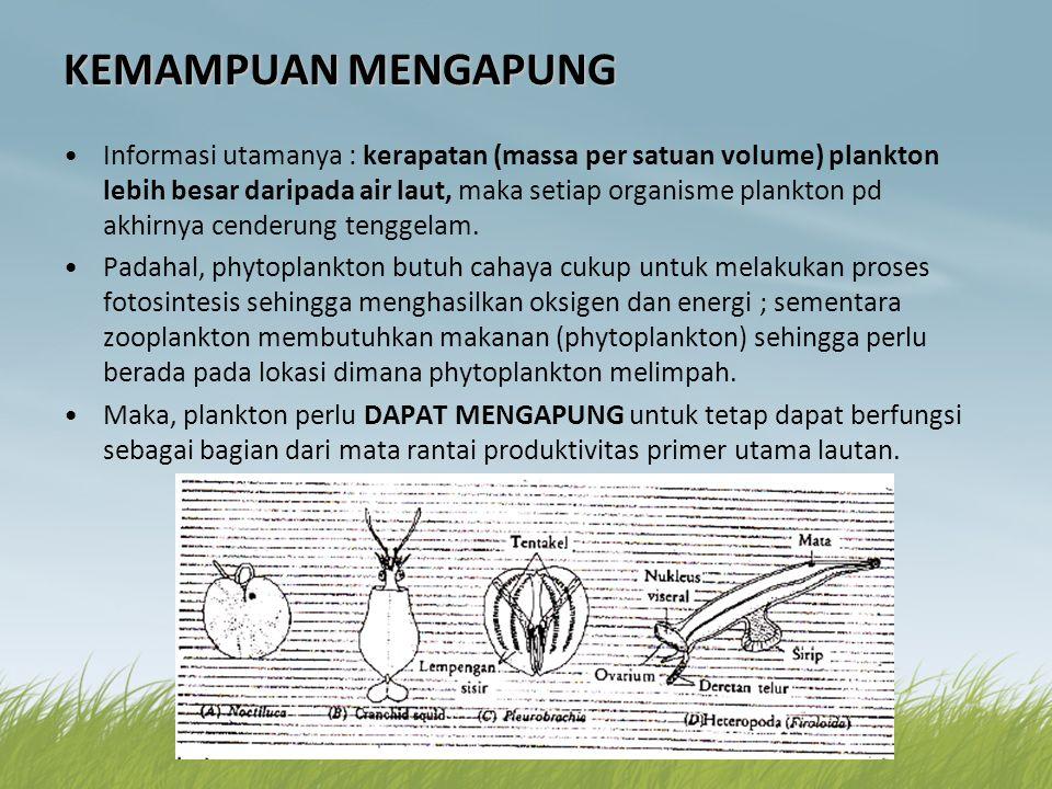 KEMAMPUAN MENGAPUNG •Informasi utamanya : kerapatan (massa per satuan volume) plankton lebih besar daripada air laut, maka setiap organisme plankton p