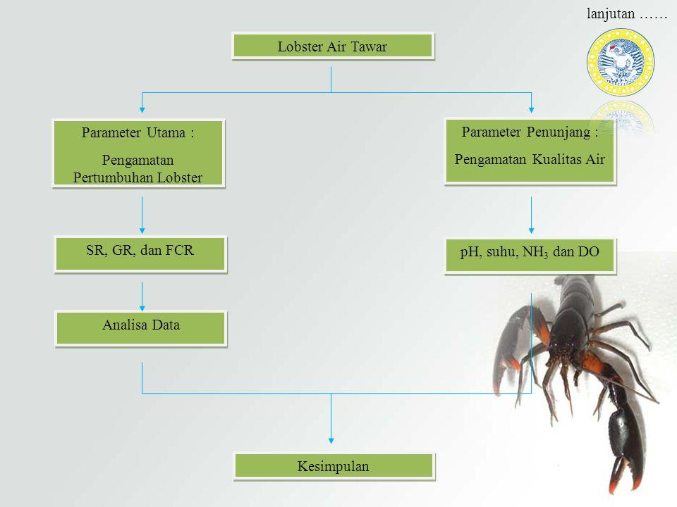 Lobster Air Tawar Parameter Utama : Pengamatan Pertumbuhan Lobster Parameter Utama : Pengamatan Pertumbuhan Lobster Parameter Penunjang : Pengamatan K