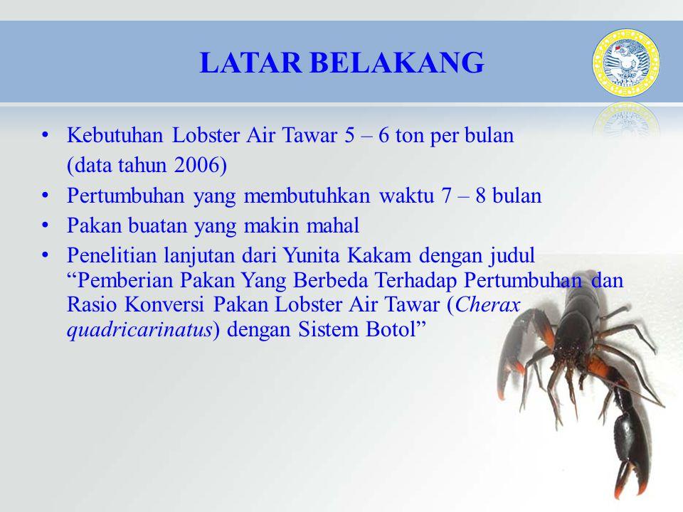 • Kebutuhan Lobster Air Tawar 5 – 6 ton per bulan (data tahun 2006) • Pertumbuhan yang membutuhkan waktu 7 – 8 bulan • Pakan buatan yang makin mahal •