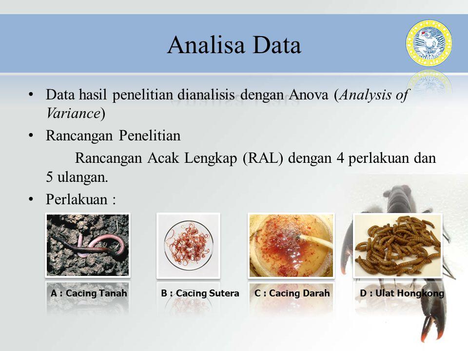 • Data hasil penelitian dianalisis dengan Anova (Analysis of Variance) • Rancangan Penelitian Rancangan Acak Lengkap (RAL) dengan 4 perlakuan dan 5 ul