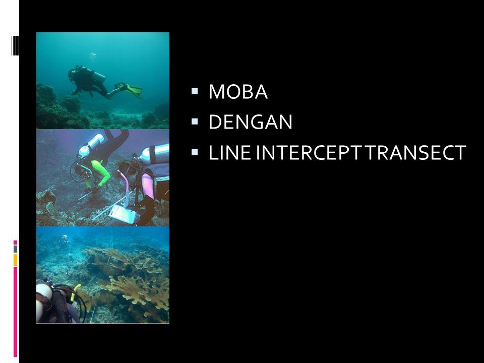 Other Fauna Kategori dan Kode Lifeform • Algae • Algae Assemblage(AA) • Coralline Algae(CA) • Halimeda(HA) • Macro Algae(MA) • Turf Algae(TA) Abiotik • Sand(S) • Rubble(R) • Silt(SI) • Water(WA) • Rock(RCK)
