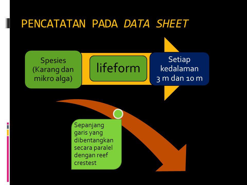 PENCATATAN PADA DATA SHEET Spesies (Karang dan mikro alga) lifeform Setiap kedalaman 3 m dan 10 m Sepanjang garis yang dibentangkan secara paralel den