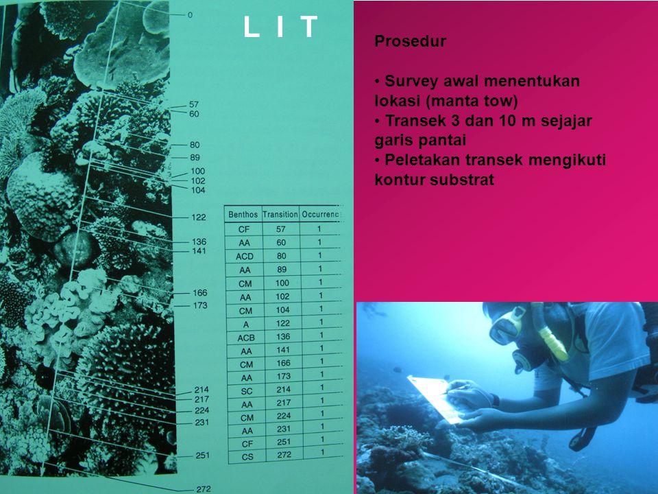 Prosedur • Survey awal menentukan lokasi (manta tow) • Transek 3 dan 10 m sejajar garis pantai • Peletakan transek mengikuti kontur substrat L I T