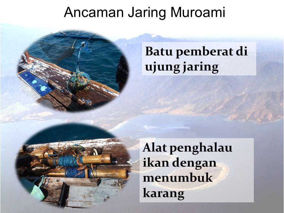  Anggota Kelompok jaring muroami sebanyak 30 – 40 orang  Jaring muroami dilakukan oleh kelompok nelayan dari Gili Air dan luar Gili Air